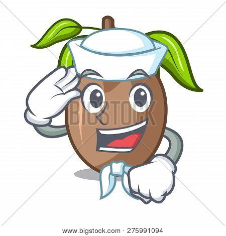 Sailor Sapodilla Fruit On The Character Bowl