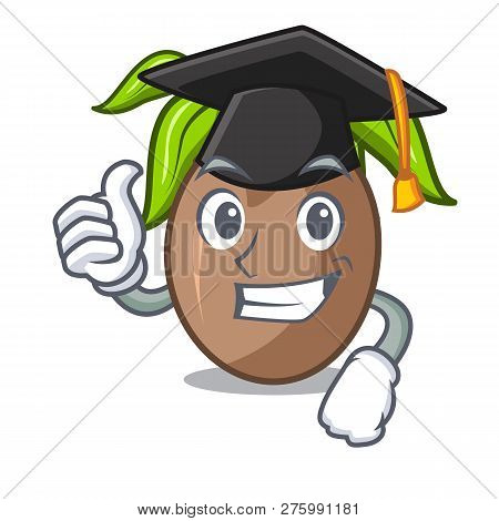 Graduation Sapodilla Fruit Isolated On The Mascot