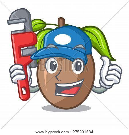 Plumber Slice Sapodilla Fruit On Shape Cartoon