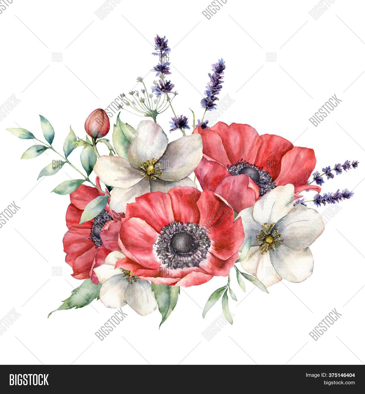 Watercolor Wildflowers Image Photo Free Trial Bigstock