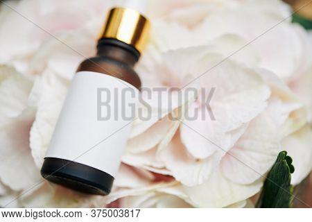 Small Bottle Of Revitalizing Anti-aging Serum On Light Pink Hydrangea Flower