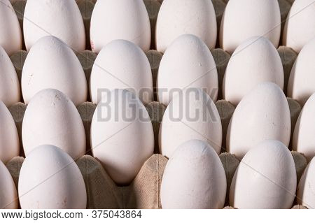 Organic Raw Chicken Eggs Close-up. One Egg Was Taken. Food Photography.
