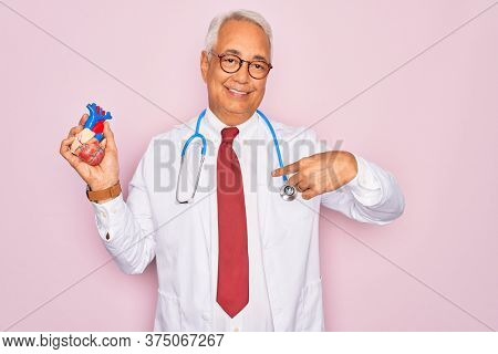 Middle age senior grey-haired cardiologist doctor man holding professional medicine heart with surprise face pointing finger to himself