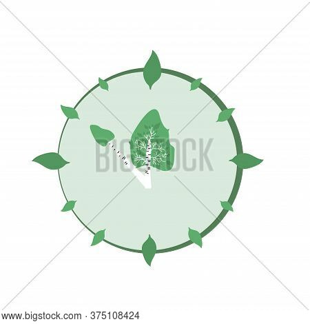 Clock Made Of Birch Trees And Leaves. Ecology And Conservation Of The Forest Concept.