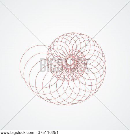 Closup Snail Seashells Spiral.seashell Which Consists Red Circles White Background