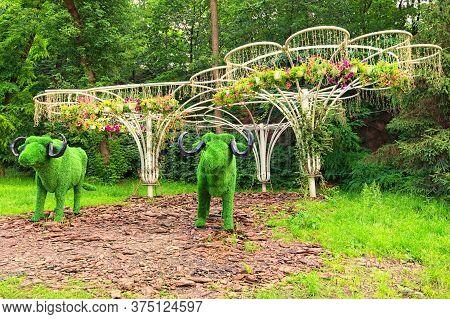 Kyiv, Ukraine - June 29, 2020: Floral Safari Festival On The Spivoche Pole (singing Field). Traditio