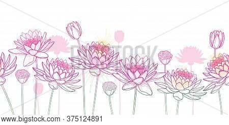 Vector Horizontal Seamless Pattern With Outline Lotos Or Water Lily Flower, Bud And Seed Pod In Past