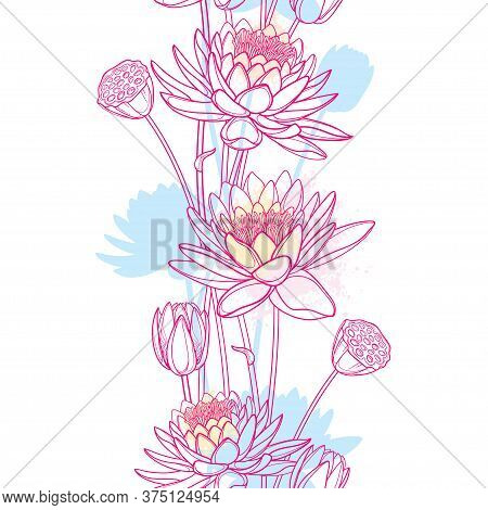Vector Vertical Seamless Pattern With Outline Lotus Or Water Lily Flower, Bud And Seed Pod In Pastel