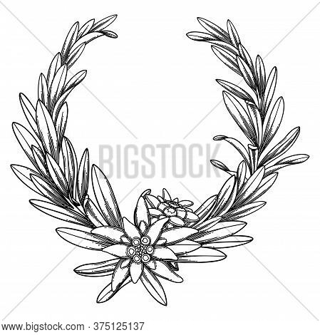 Graphic Edelweiss Wreath Isolated On White Background