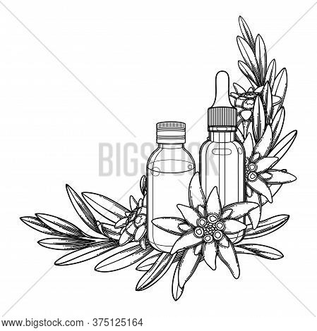 Graphic Essential Oil Bottles Decorated With Edelweiss Leaves And Flowers.