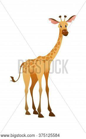 Jungle Wild Giraffe. Colorful Beautiful Safari, Circus Or Zoo Cartoon Animal, Wildlife Trendy Exotic