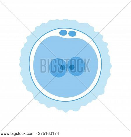 Zygote Icon And Embryo Development Stage. Pregnancy And Womans Health Concept. Human Sexual Reproduc