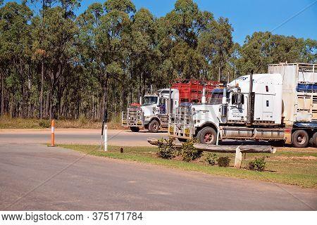 Townsville To Undara Highway, Queensland, June 2020: Two Road Train Trucks Hauling Livestock To Mark