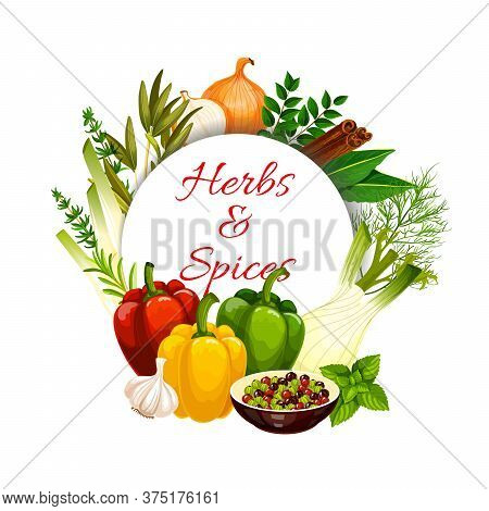 Herbs And With Vector Food Seasonings And Vegetable Condiments. Green Basil, Pepper And Rosemary, Th
