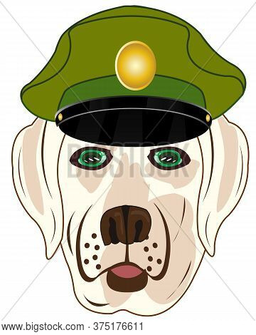 Vector Illustration Of The Head Animal Dog F Service Cap