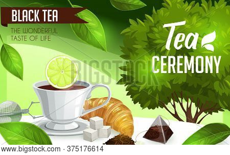 Tea Ceremony. Vector Bush, Brew And Sugar, Croissant And Lemon, Strainer, Dry And Green Leaves On Ta