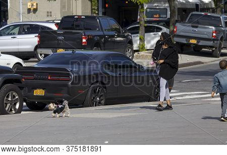 Bronx, New York/usa - May 20, 2020: African American Woman Wears Mask While Walking Her Dog Outdoors