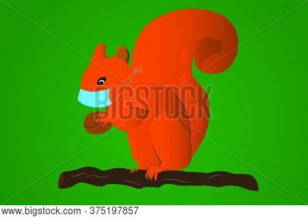 Squirrel With A Nut In A Medical Mask. The Animal In The Mask. Illustration. Vector. Virus Protectio