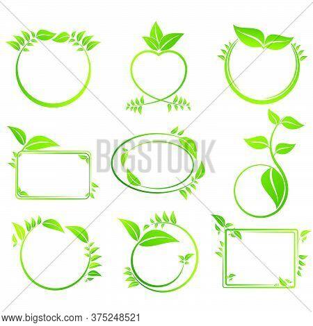 Leaf Eco Frame Set Vector Symbol Natural Illustration