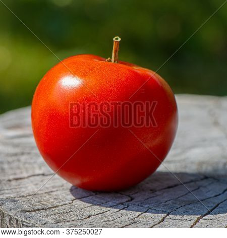 Fruit Of A Red Tomato Lies On A Wooden Surface Outdoors On A Sunny Day. Cooking Food.