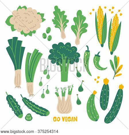 Flat Set Hand Drawn Healthy Food. Illustration Of Green Vegetables. Organic Farm Products In Sketch