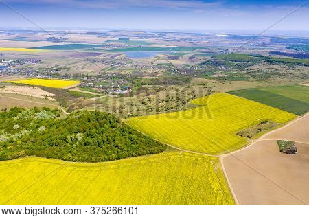Aerial View Of Canola And Cereal Fields In Springtime, Rural Landscape In Romania