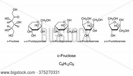 Fructose, Fruit Sugar, Monosaccharide, Chemical Structure. Simple Sugar. Natta Projection Of Open-ch