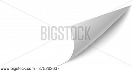 Curled Paper Page. Vector Flip Sheet Corner Paper Peel. White Background.