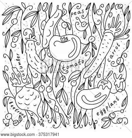 Hand Drawn Vector Illustration With Tomato, Cucumber, Peas, Aubergine, Beetroot And Carrot. Black In