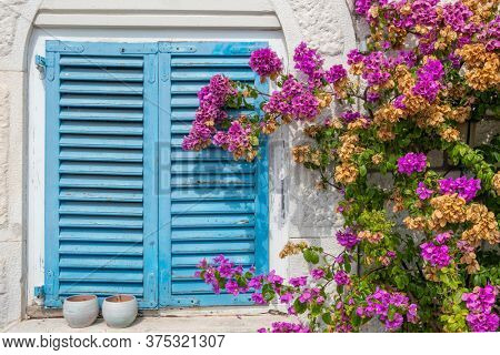 Croatian house with blue shutters and purple flowers. Traditional mediterranean architecture in Croatia