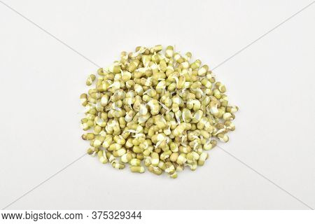Bean Sprouts On Isolated White Background, Mung Sprouts