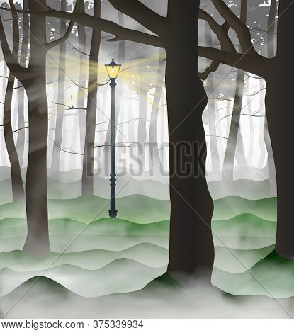 Mysterious Urban Park With A Lot Of Tree Trunks Inside The Clouds Of Grey And White Fog. Lamp Post S