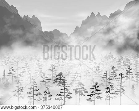 Hight Detailed Realistic Vector Pine And Fir Forest With A Lot Of Trees Inside Thick Fog Clouds Unde