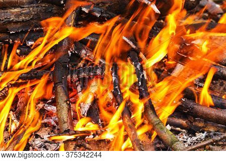 Close Up Of Blazing Campfire, Campfire Burning Logs In Large Orange And Yellow Flames In Close Up Of