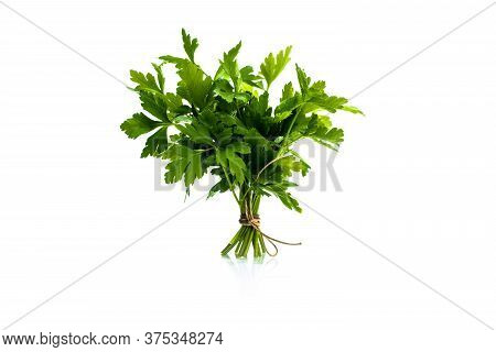 Fresh Parsley Sprig Tied With Twine, Gotten Up, Isolated On White Background