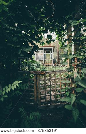 Vertical Shot Of A Cozy Mysterious Wooden Wicket In Deforused Foreground In A Corridor Of Plants And