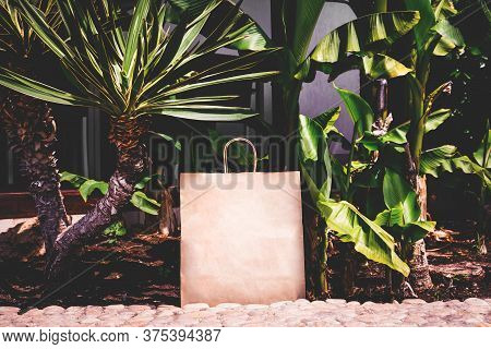 Craft Paper Eco Bag In The Garden Among Plants. Eco-friendly Concept Of Consumption And Shopping.