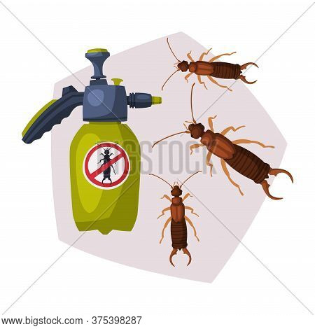 Sprayer Bottle Of Diplura Harmful Insect Insecticide, Pest Control Service, Detecting And Exterminat