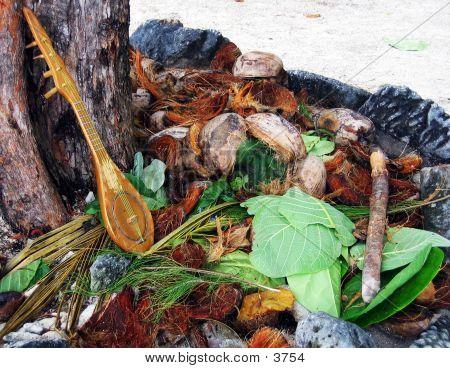 Ukulele And Coconut Shells