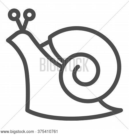 Snail Line Icon, Wildlife Concept, Mollusk With Spiral Shell Sign On White Background, Garden Snail