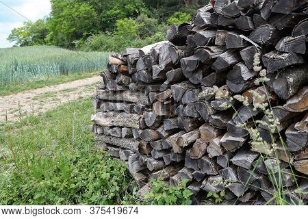 Dry Chopped Firewood Stacked In A Woodpile