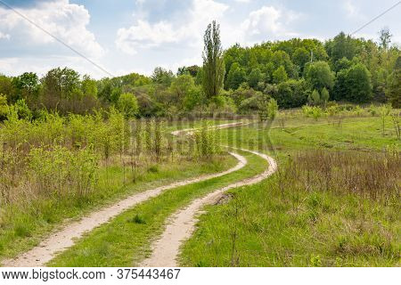 summer landscape with rut road in green steppe