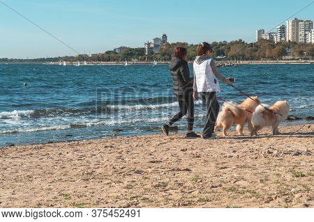 Two Young Women In Casual Wear Walking With The Chow Chow Dogs Along The Sandy Beach In Istanbul. Ur