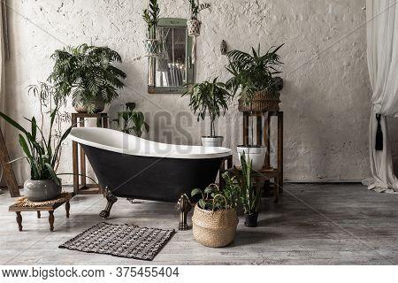 Bathroom In Vintage Style With Elegant Interior, Contemporary Black Tub, Textile Carpet, Green Plant