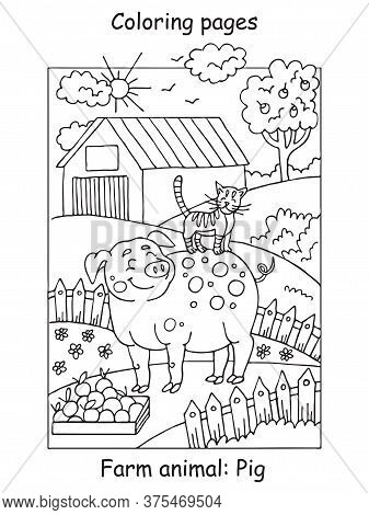 Vector Coloring Pages With Smiling Pig And Cat On The Farm Meadow. Cartoon Contour Illustration Isol