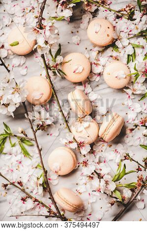 Flat-lay Of Sweet Macaron Cookies And Blossom Flowers And Branches