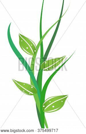 Eco Nature Concept With Green Leaves. Ecological Background With Green Lines. Growth Concept. Vector