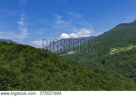 High Mountains Covered By Dense Forest In The National Park Montenegro Durmitor.
