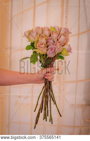 Women Hand Holding A Bouquet Of Pink Mondial Roses Variety, Studio Shot, Pink Flowers