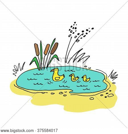 Small Forest Lake With Reeds And Ducks. Doodle Style. Vector Illustration. Design Element For Greeti